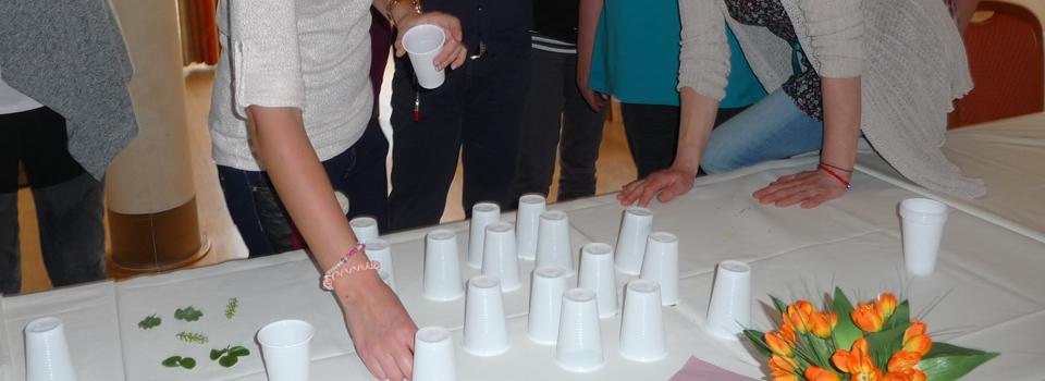 Hier wird Pflanzenmemory gespielt, Gartentherapeutische Inhouse-Fortbildung in Lüneburg