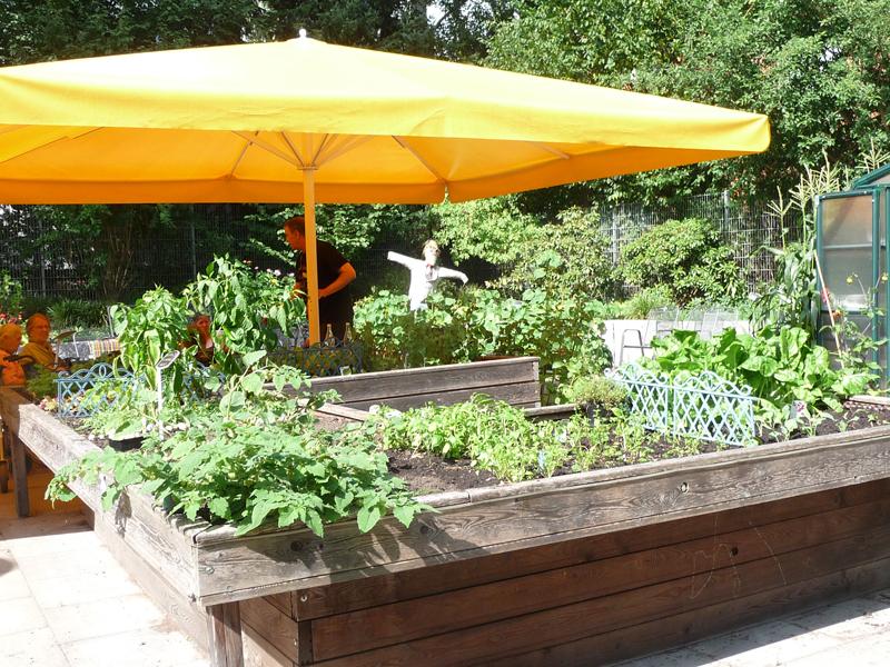 Hochbeet mit Gemüse im Therapiegarten