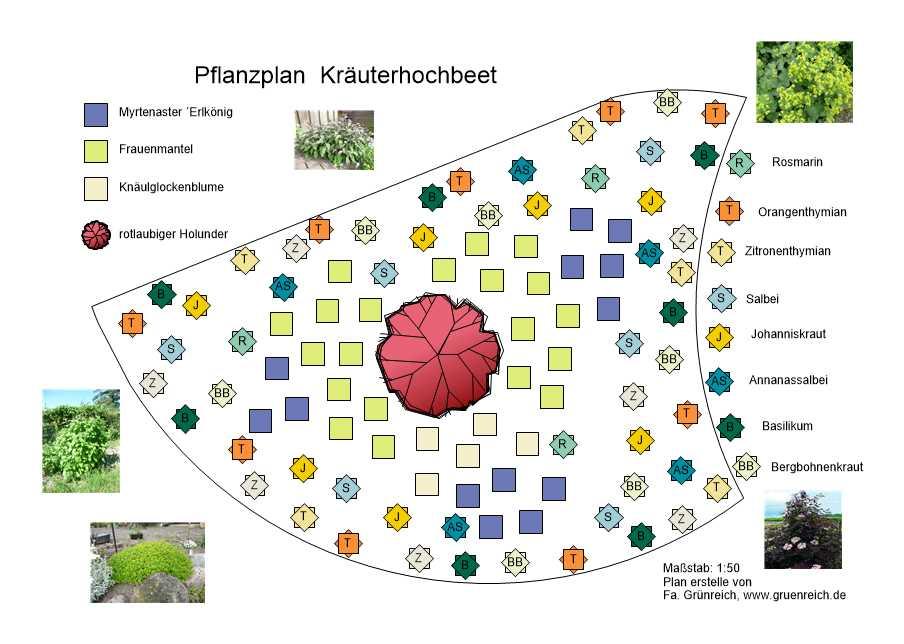 Planung eines Kräuterbeetes