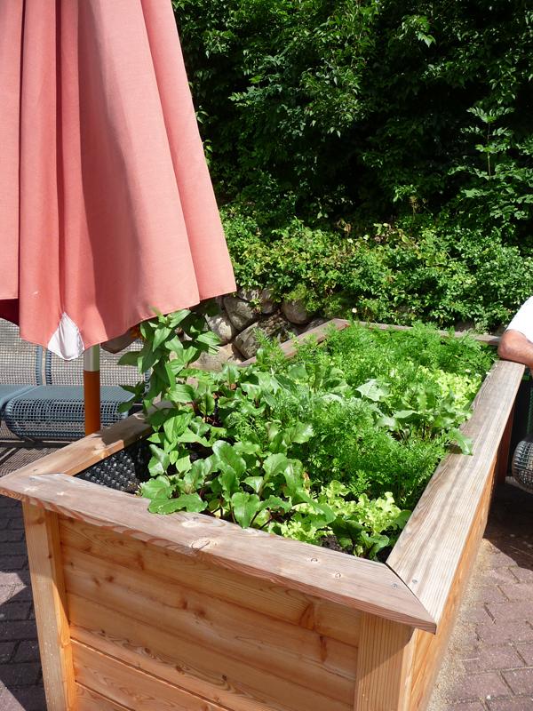 Hloz-Hochbeet mit unterschiedlichen Gemüsem