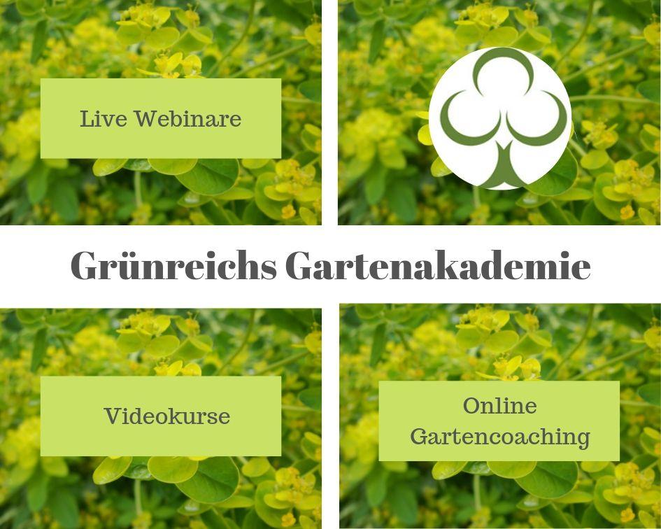 Grünreichs Gartenakademie