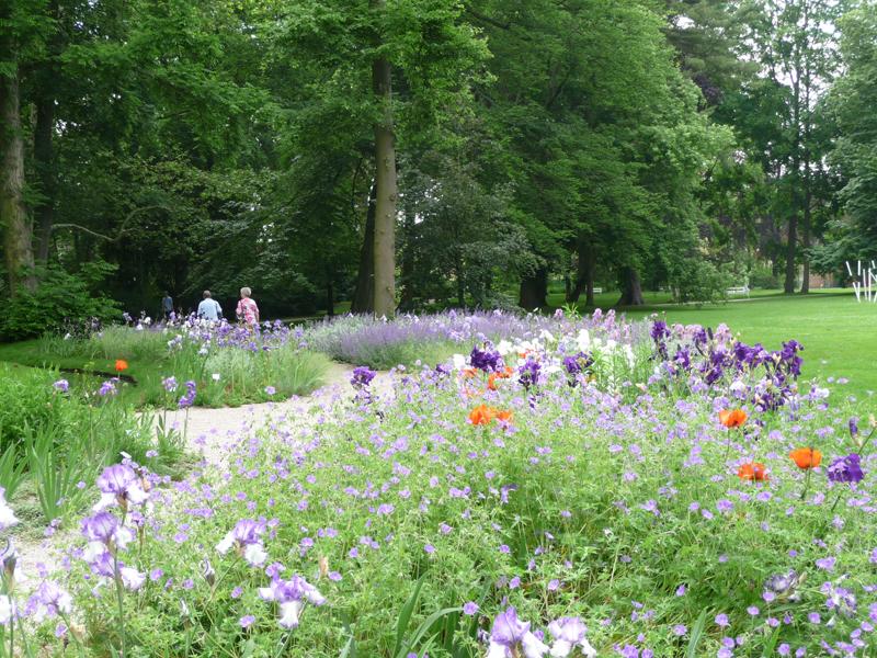 Bepflanzung in Violetttönen