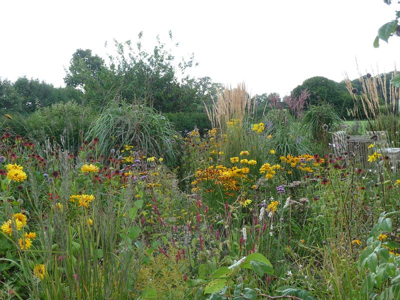 Bepflanzung mit Prariebeeten