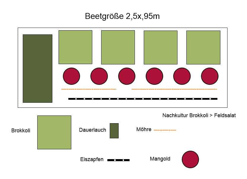 Anbauplan für großes Hochbeet