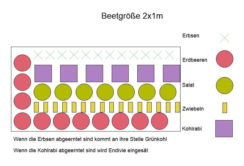 Anbauplan Rahmenbeet