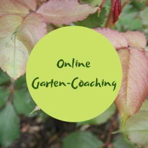 Online-Gartencoaching Gartenakademie