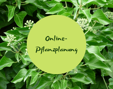 Online-Pflanzplanung