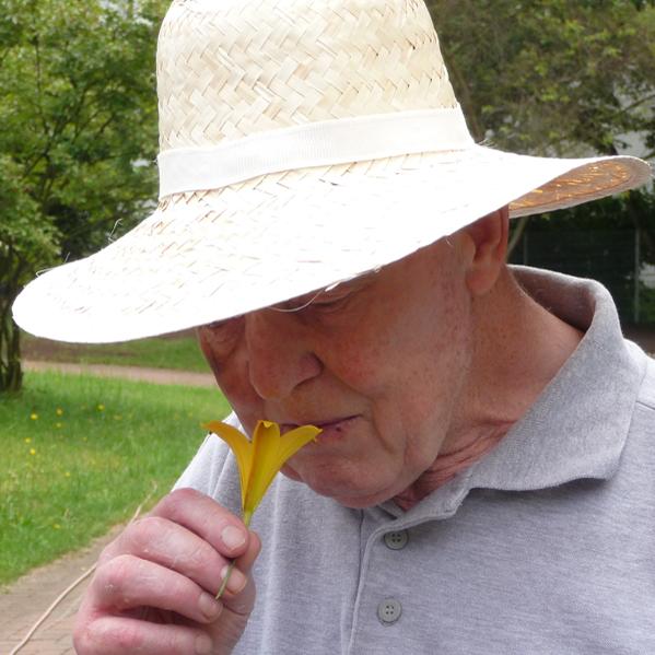 Alter Mann riecht an Taglilie