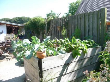 Grundkurs Gartentherapie Holzhochbeet mit Gemüse