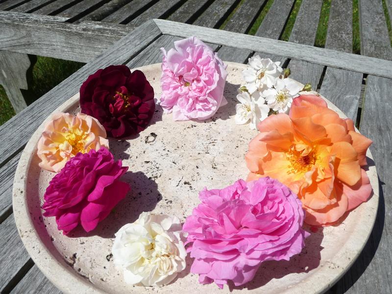 Verschiendene Rosen auf Travertinteller