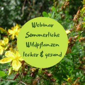 Webinar sommerliche Wildpflanzen