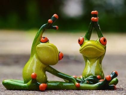 Wellnesoase Garten Frösche die Yoga machen