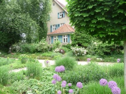 Vorgarten gestalten pflegeleichte Bepflanzung