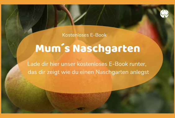 Ebook-Naschgarten