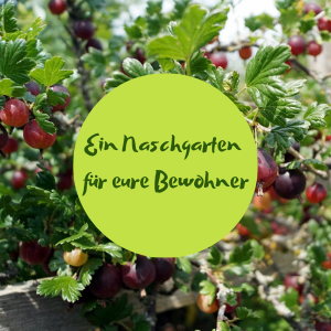 Online-Workshop Naschgarten Bewohner