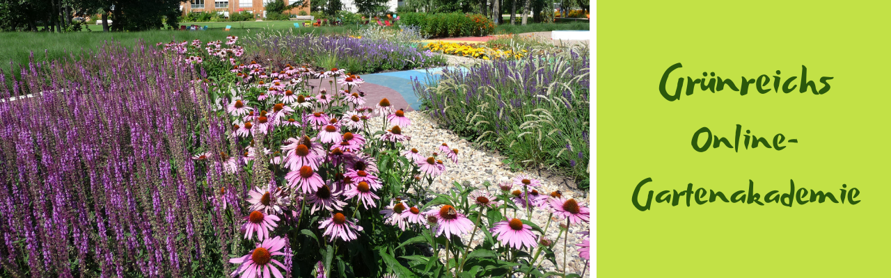 Online-Gartenakademie