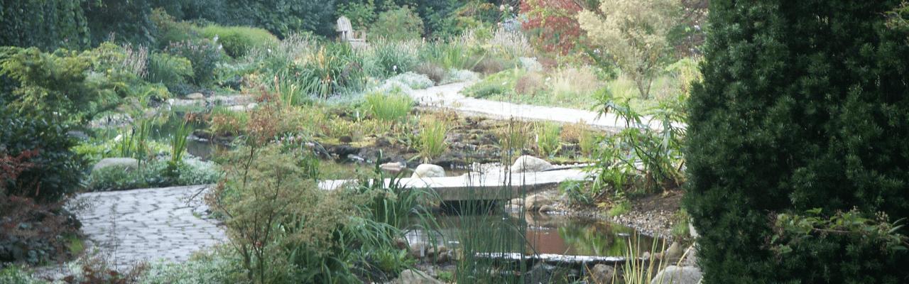 Gartencoaching Wege&Wasser im Garten